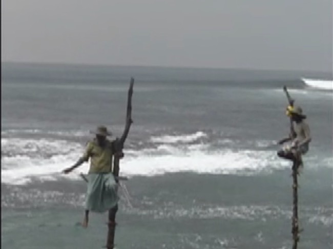 sri lanka pole fishermen